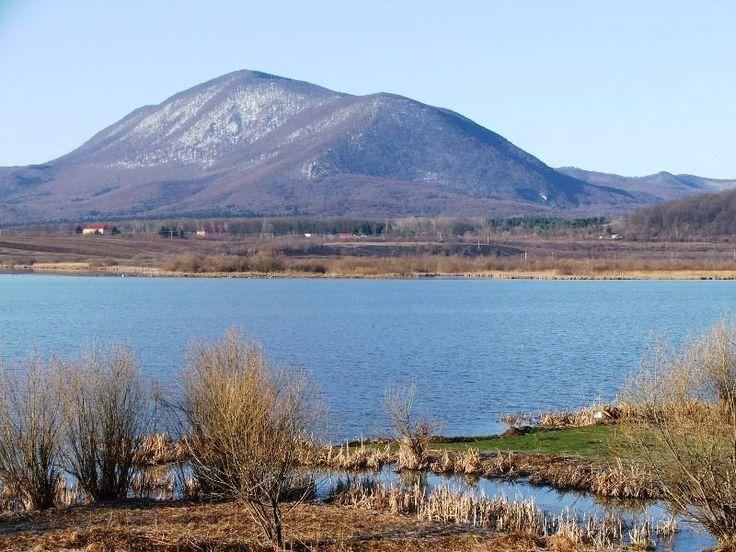 Ziua mondiala a zonelor umede sarbatorita in judetul Brasov
