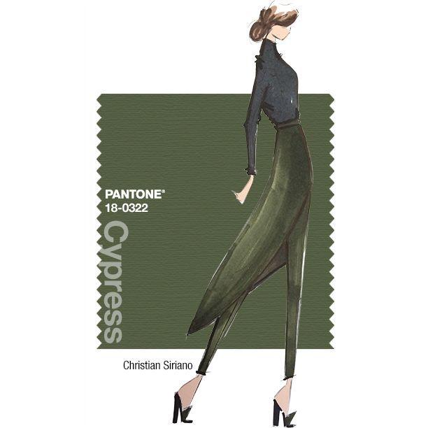 Cypress Pantone