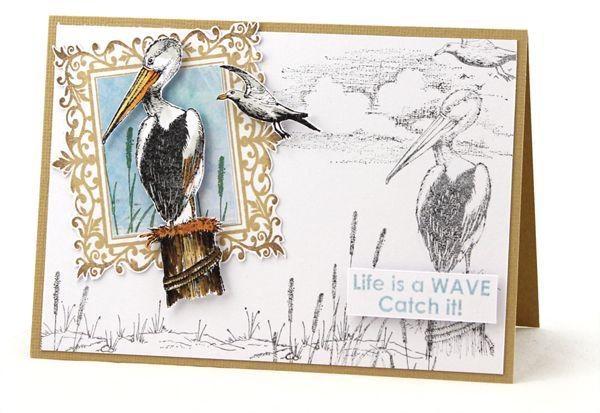 MT575 Pelican Art Card