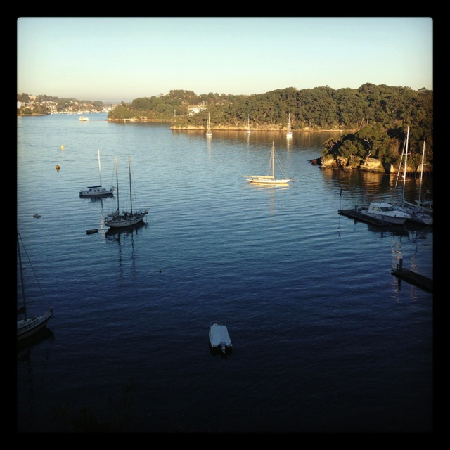 Glorious winter's morning Waverton Sydney Harbour