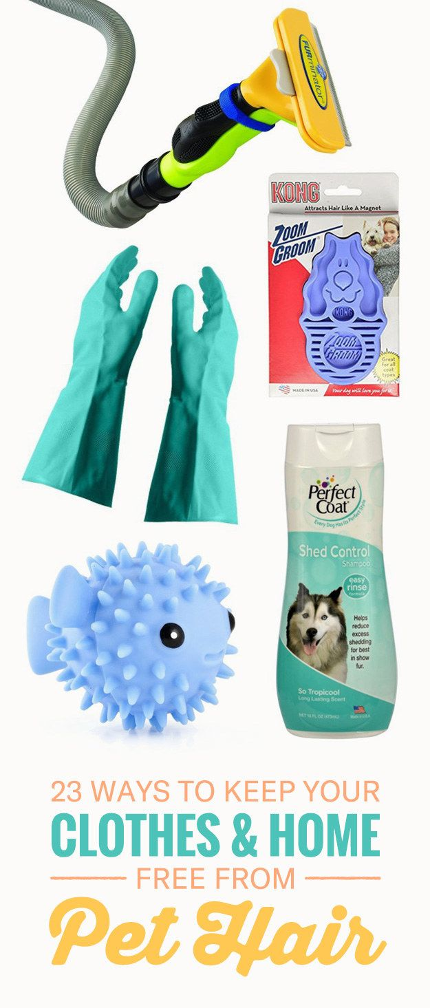 23 Tips And Products That'll Save You From Being Covered In Pet Hair