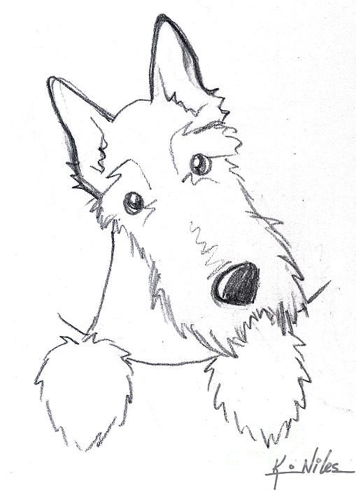 Kim Niles Sketch | Scottie Dogs Clip Art. Graphics Line Drawings | Pinterest | Pockets And ...