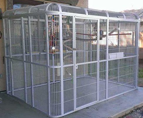 Walk in Parrot Cage Aviary - Centurion #parrotcageideas #aviariesdiy #howtobuildanaviary