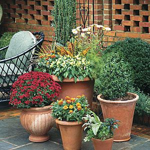 Mums, Marigolds, Peppers, & Crotons | SouthernLiving.comGardens Ideas, Container Gardens, Garden Ideas, Gardens Southernliving Com, Vegetables Gardens, Flower Pots