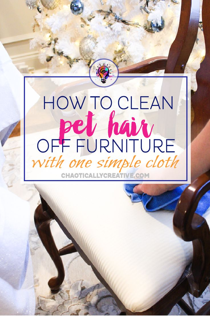 How to Clean Chairs Covered in Pet Hair via @chaoticallycreative
