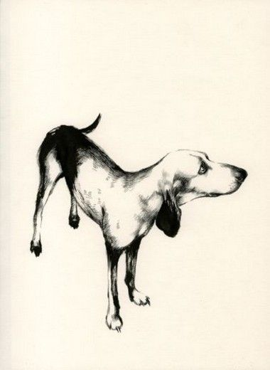 Vecchi Cani is also a book published by Nuages.