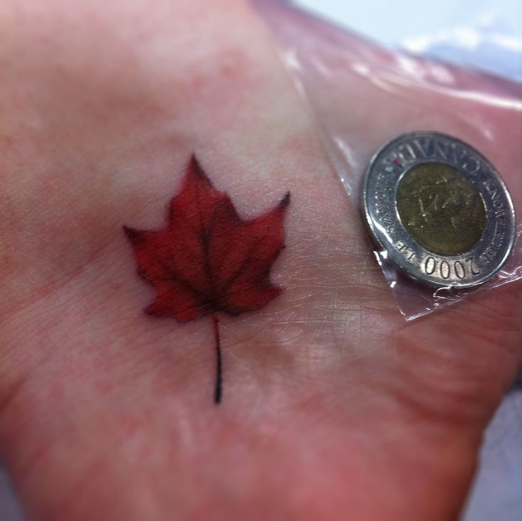 maple leaf tattoo - THIS. but white
