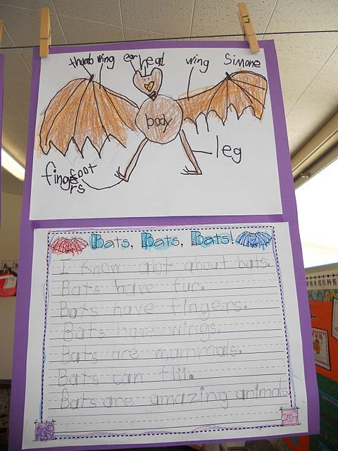 Write about bats with Stellaluna!...am thinking this idea can be adapted to other texts and big books