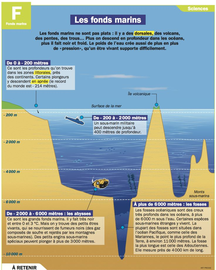 Fiche exposés : Les fonds marins