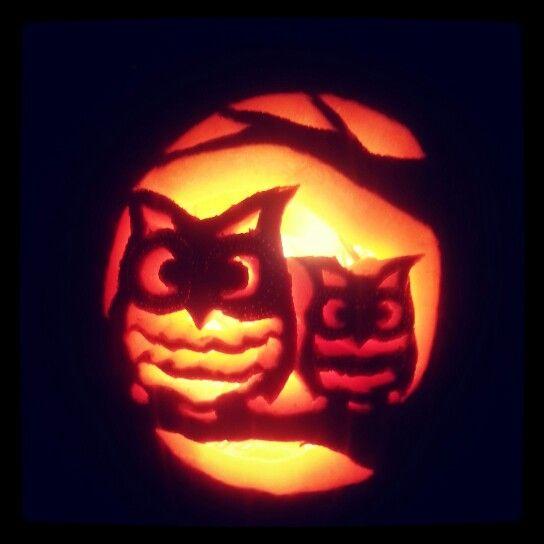 Cute owl pumpkin fall pinterest pumpkins and