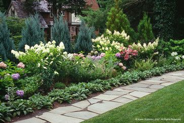 Landscape design Hydrangeas and Perennials on Pinterest