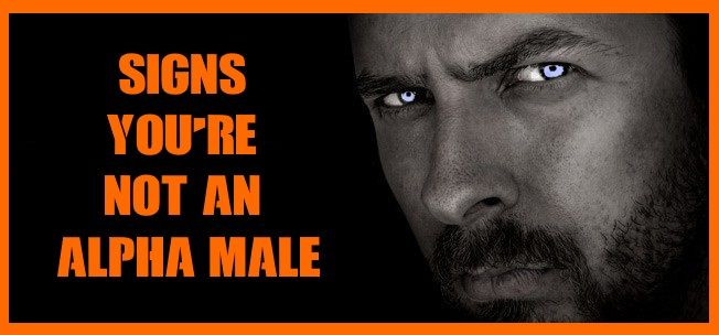 Signs you're Not an Alpha Male. It's so hard to be an Alpha Male these days. Alpha Male For Women Who Love Men.  Discover the secrets in this free video, click here >>> https://www.youtube.com/watch?v=c5D5PpZ3XFA  In this video you will learn the secrets, absolutely free...  #macho #hot #rico #sexy #sex #muscle