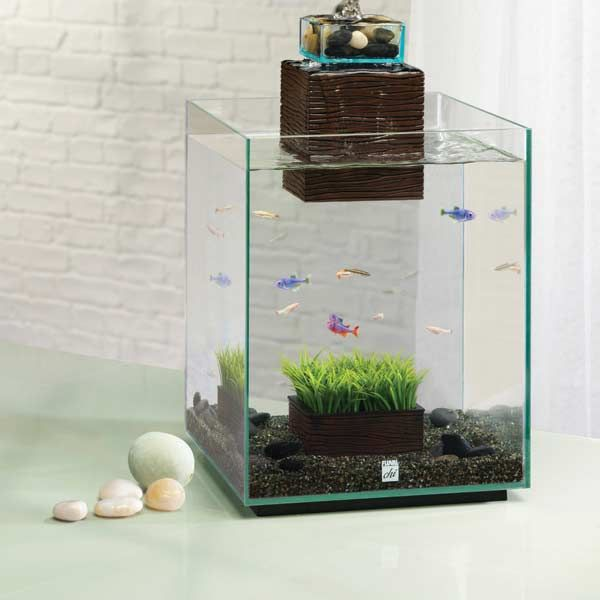 Best 25 small fish tanks ideas on pinterest fish tank for Small fish tanks for sale