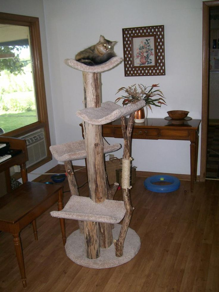 616 best pet furniture images on pinterest cat stuff for Epic cat tree