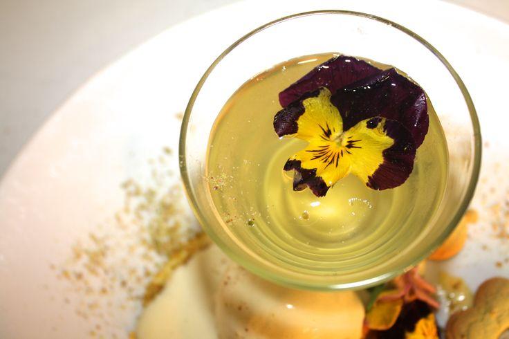 A sneak peak of the beautiful Elderflower Jelly from our new Spring Menu!