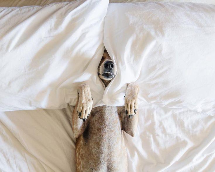 Marfa Mondays by thiswildidea