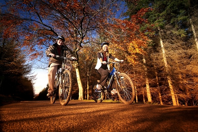 Hamsterley Forest in the Durham Dales - the ideal destination for a cycling break!