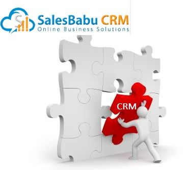 How SalesBabu CRM Helps to SME's to grow their Business?