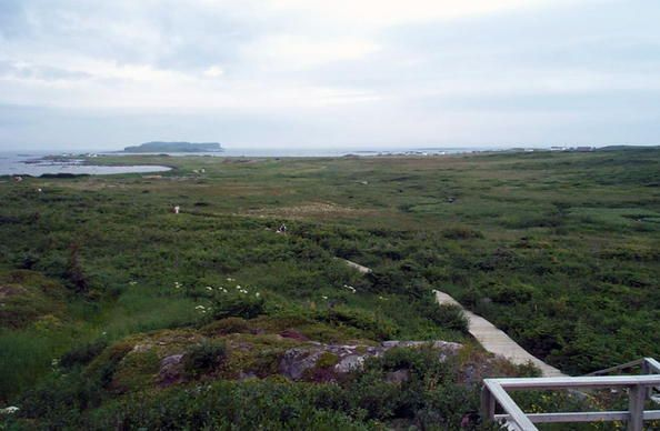 At the tip of the Great Northern Peninsula of the island of Newfoundland, the remains of an 11th-century Viking settlement are evidence of the first European presence in North America. The excavated remains of wood-framed peat-turf buildings are similar to those found in Norse Greenland and Iceland.
