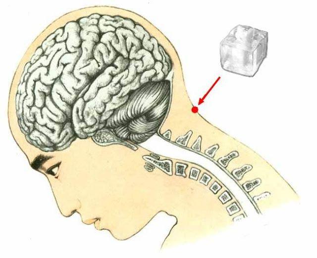 Vous avez déjà entendu parler des points de pression dans votre corps: voici l'un le plus important! Le point de pression idéal nommé Feng Fu en acupuncture chinoise, se situe sous le crâne unissant la tête et le cou, ce point est la clé du bien-être. Cette astuce de cube de glace est une méthode …