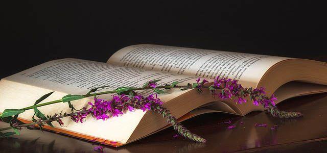 Jag liksom många andra drömmer om att någon gång få skriva en bok. Jag vill skriva en bok men jag vet inte vilken typ av bok.