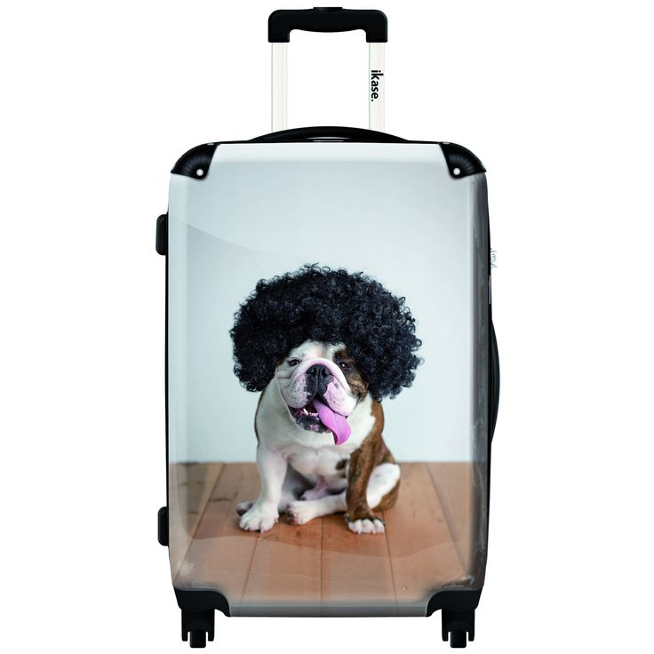 iKase Dog with Wig 20-inch Fashion Hardside Carry-on Spinner Suitcase