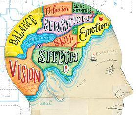 GREAT visual!!!!  brain diagram...like a map which of course I like, like, like...