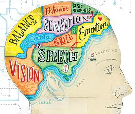 GREAT visual!!!!  brain diagram...like a map which of course I like, like, like...