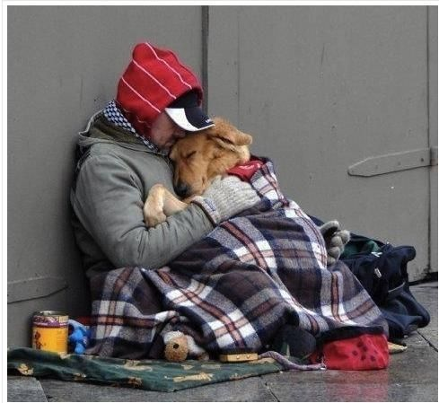 Most heartwarming picture I have seen in awhile. - Imgur