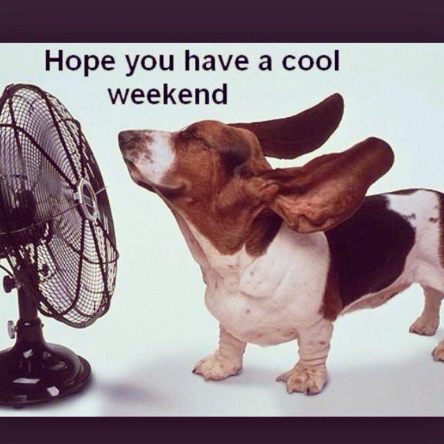 #Καλημερα #καλο σαββατοκυριακο #goodmorning #enjoy #the #weekend!!
