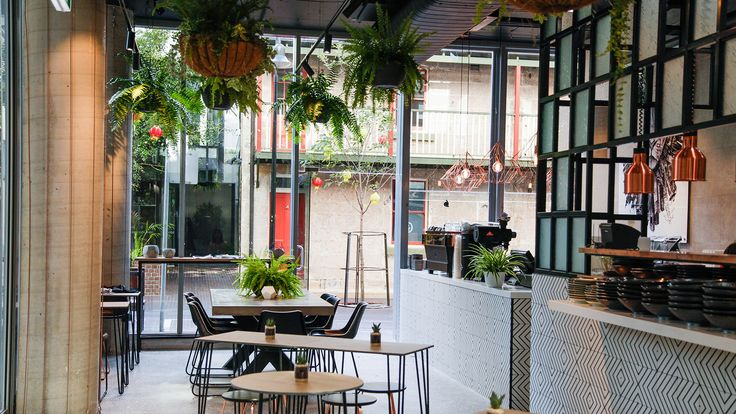 Read Concrete Playground's review of Concrete Jungle, Chippendale and find 203 more Sydney Cafe restaurant reviews. The best guide to bars, restaurants and cafes in Sydney.