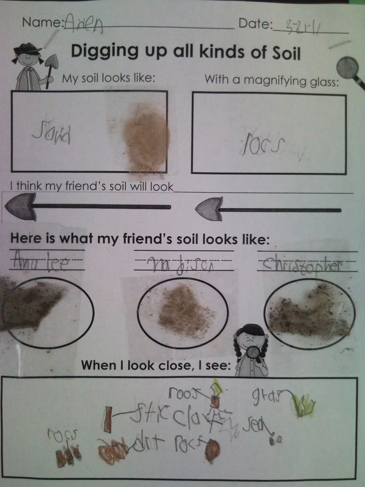 1000 images about first grade soil on pinterest for Different types of soil for kids