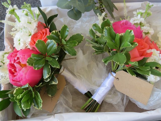 DesignsandEvents- Mother of the Bride and Mother of the Groom nosegay bouquets of peach peonies, coral roses and white stock.