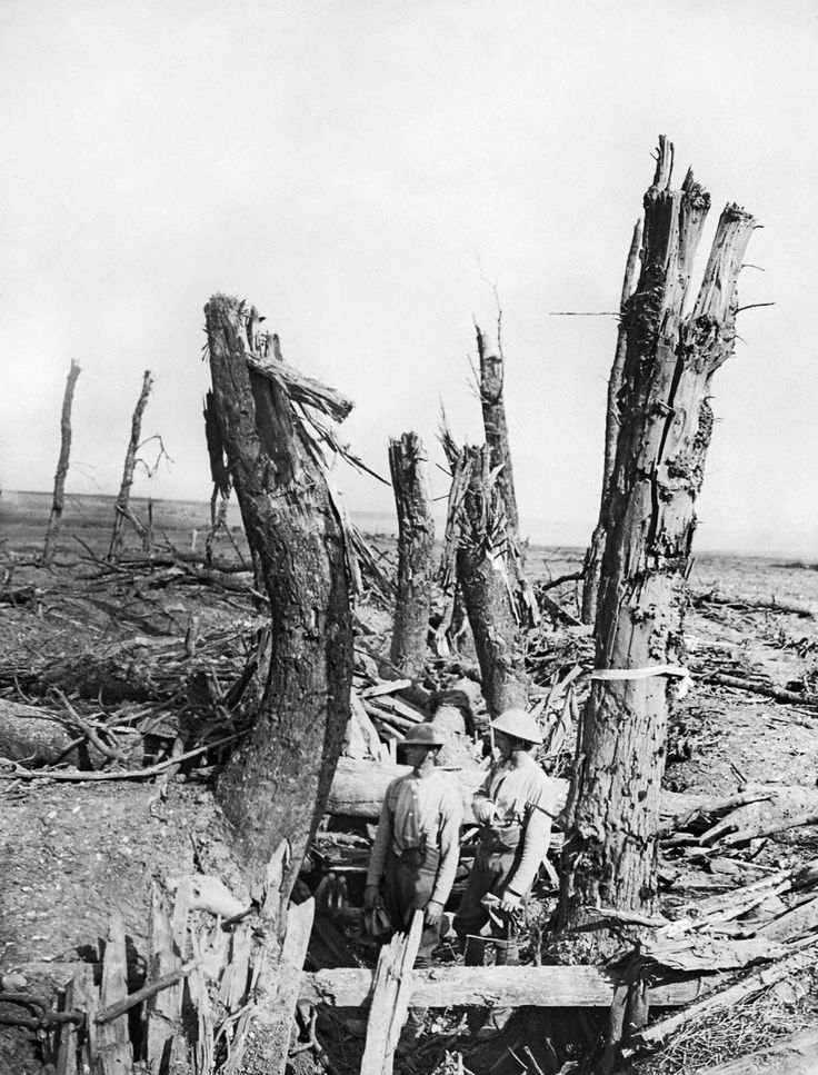 Two British soldiers stand in a wrecked German trench at Ginchy, France. The trench appear to run between two rows of trees, which have been devastated by shellfire. Both soldiers are wearing steel helmets. | First World War Poetry Digital Archive