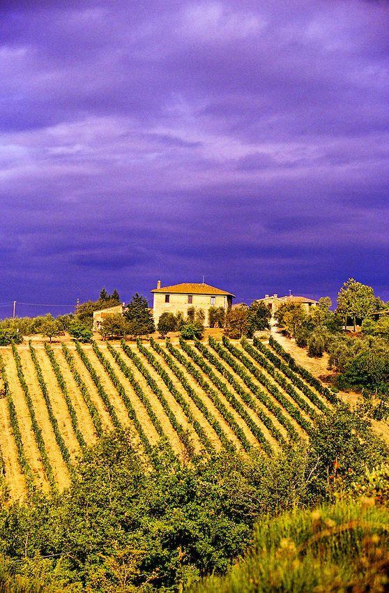"""Strada Chiantigiana"" between Siena and Castellina in Chianti, Tuscany..."