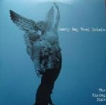 Sunny Day Real Estate - The Rising Tide (A+ want. Need even.)
