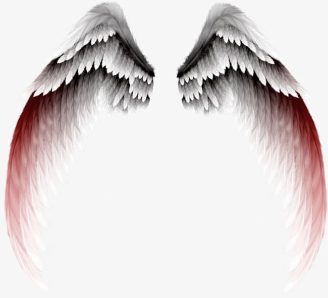 View And Download Hd Demon Wings Png Demon Wings Transparent Background Png Image For Free The Image Resolution Is 1383 1024 Demon Wings Demon Drawings Art