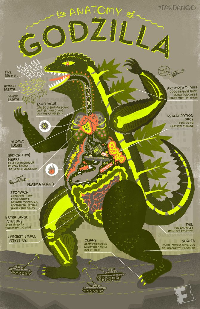 The Anatomy of Godzilla | Cool infographics | Godzilla ...