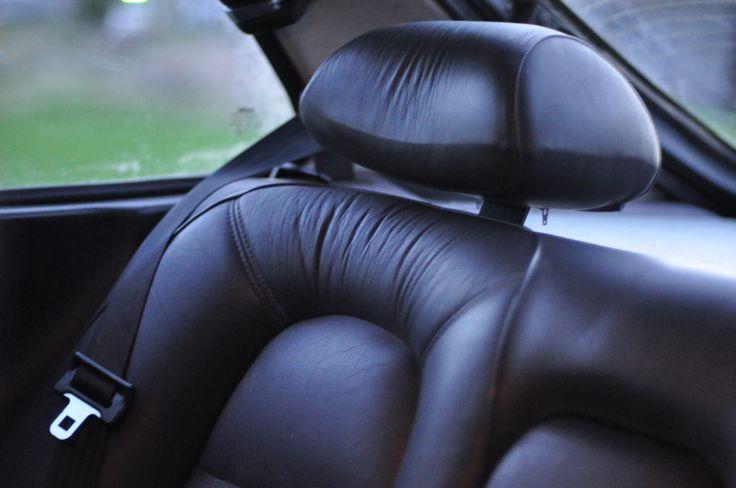 Leather Backseat