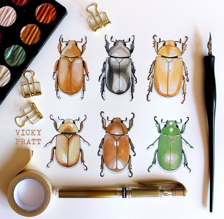 Chrysina Beetles or Jewel Scarab by Vicky Pratt. Copic markers and Finetec gold paint . Instagram and Facebook Vicky Pratt Illustrator. www.vickyprattillustrations.com