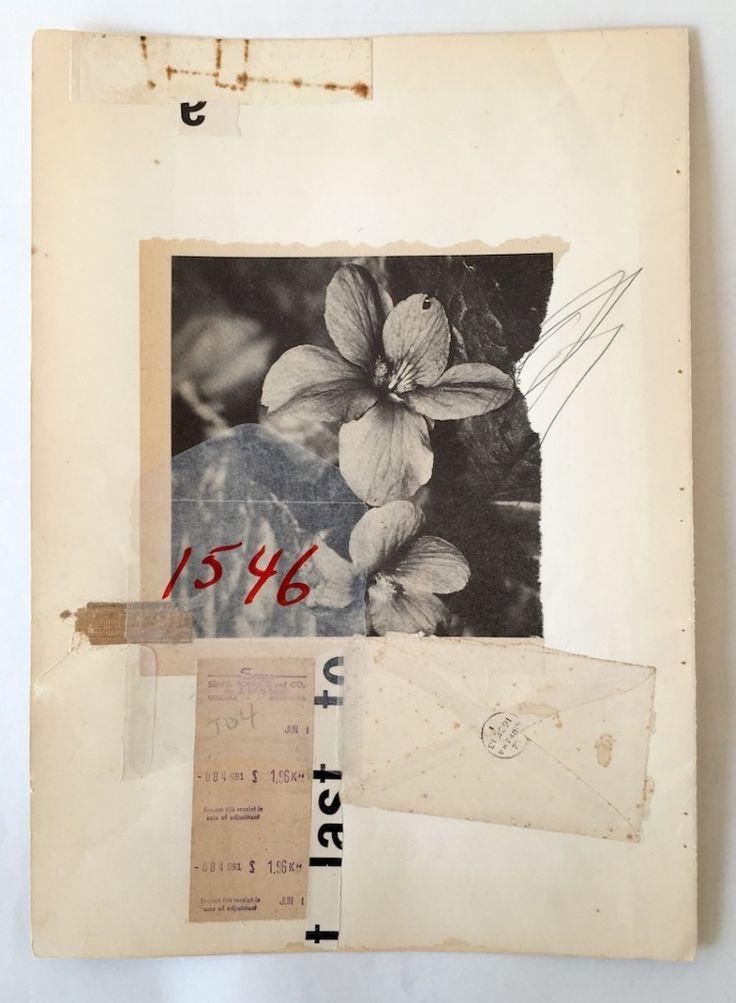 1546 Hibiscus / collage / 55x42cm framed / LEE MCKENNA