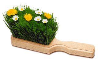 Otthonka: Tavaszi nagytakarítás