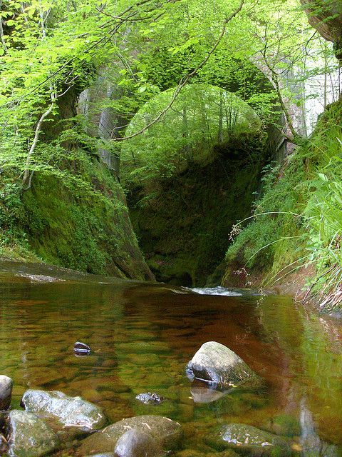 """Entrance to Finnich Glen (The Devil's Pulpit) in the incredibly beautiful Finnich Gorge, near Killearn, Scotland. According to local lore, it was a meeting place for the ancient Druids. Also, where the penultimate battle scene was filmed for the 2011 movie, """"The Eagle."""" G. Seyfert"""