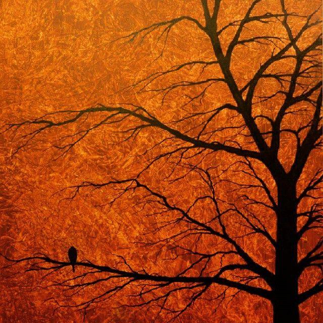 #art #artist #artoftheday #painting #canvas #acrylics #handpainted #tree #bird #solitude #vintage #forsale #instalovers #instamood #instacollage #instagram #hipstamatic #bestshot #bestshotoftheday #bestpicoftheday #bestshotoftheday #thedailytype #worldsgreatestart #helloartgallery #thefinelab #anartpage #theabundantartist #artgalaxies