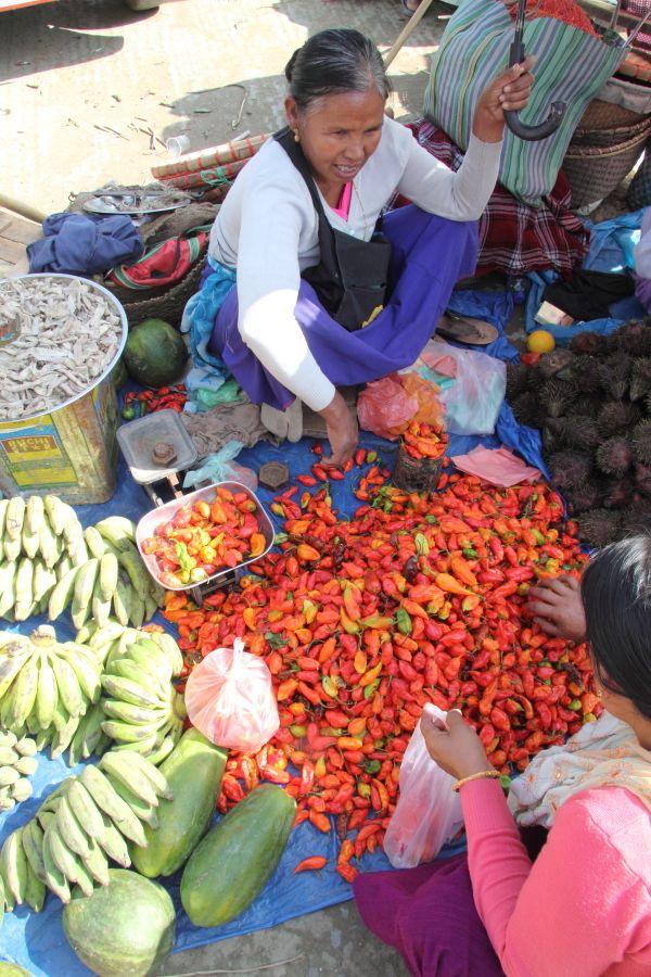 Manipur329