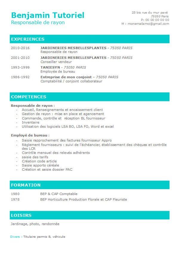 Curriculum Vitae Libreoffice Writer Current Release Cv Design Template Curriculum Vitae Downloadable Resume Template
