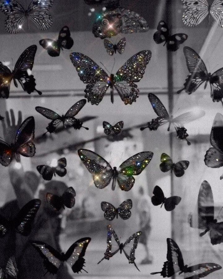 Yana Potter Artist On Instagram Butterflies Glittery Collageartis In 2020 Aesthetic Pastel Wallpaper Aesthetic Iphone Wallpaper Butterfly Wallpaper