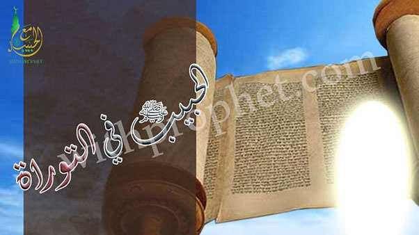 علامات نبوة النبي
