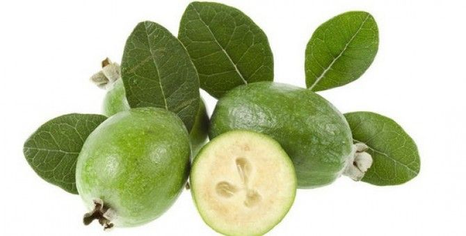 Feijoa Recipe With Honey for the Treatment of Thyroid.