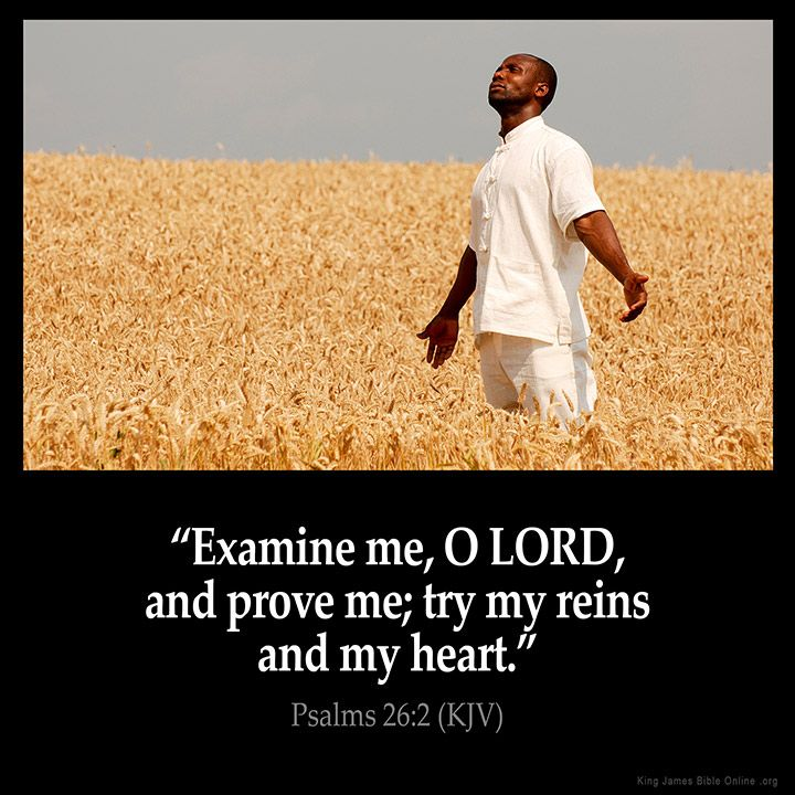 Examine me, O LORD, and prove me; try my reins and my heart.  Psalm 26:2 (KJV) Amen